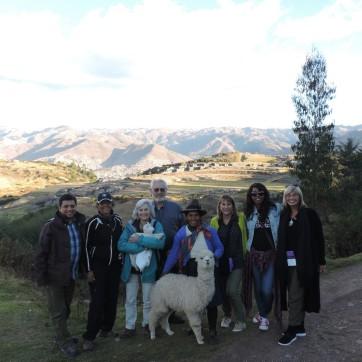 peru llama sacred valley